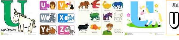 Animales letra B