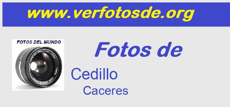 Fotos de  Cedillo