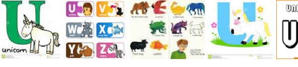 Animales letra N